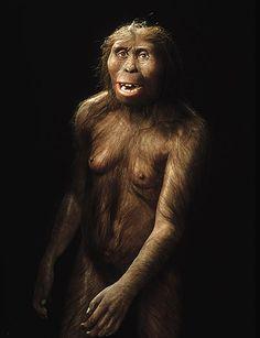 ancient humans 11
