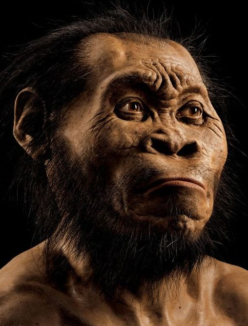 ancient humans 15