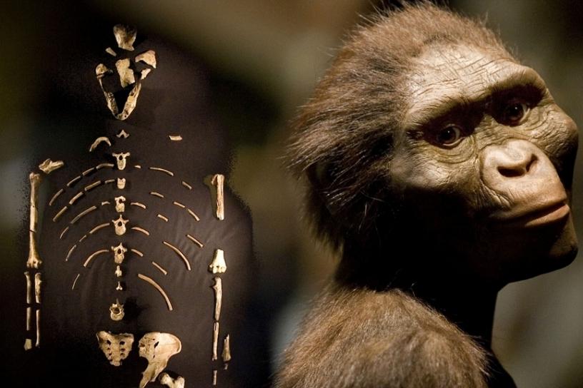 ancient humans 2