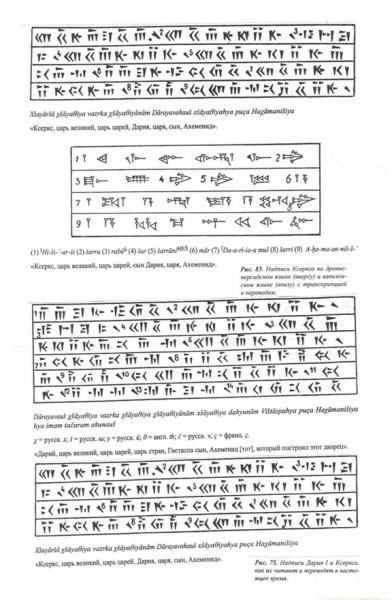 tainam.net - 53 - 11