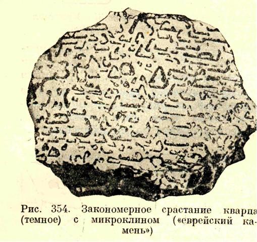 tainam.net - 53 - 12