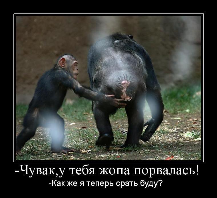 72 ass О любви рассказывает Констанитн Кузьминский - анархист и вольнодумец режет правду-матку о 20-м веке