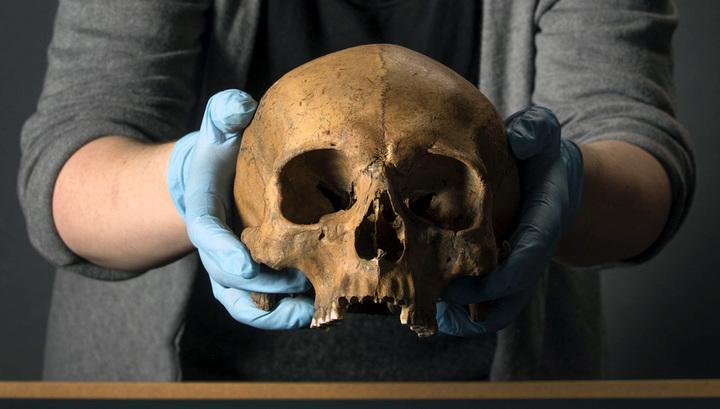 Череп, найденный при раскопках в Лондоне