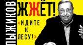 Александр Гринин vs. «историк» Александр Пыжиков
